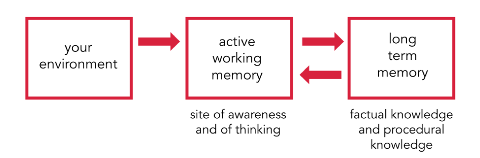 This flow chart demonstrates how information is embedded in memory